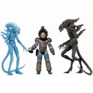 Aliens Series 11 Deluxe Action Figures 18-23cm Assortment (14) NECA51632