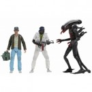 Alien - 40th Anniversary Assortment 2 (12) Action Figures 18cm NECA51698