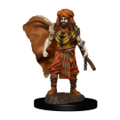 D&D Icons of the Realms: Premium Painted Figure - Human Druid Male (6 Units) WZK93031