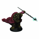 D&D Icons of the Realms Premium Figures: Male Tortle Monk (6 Units) WZK93016