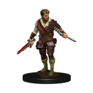 D&D Icons of the Realms: Premium Painted Figure - Human Rogue Male (6 Units) WZK93022