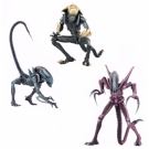 Alien vs Predator - Alien Arcade 7-inch Scale Action Figure Assortment (14) NECA51676