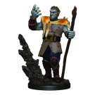D&D Icons of the Realms Premium Figures: Male Firbolg Druid (6 Units) WZK93013