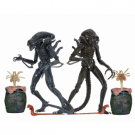 Aliens (1986) - Ultimate Alien Warrior Action Figure 7-inch Scale Assortment (8) NECA51644