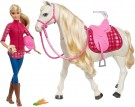 (U) Barbie (FTF02) Dreamhorse Doll and horse (Used/Damaged Packaging) /Toys
