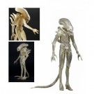 Alien - ALIEN Translucent Prototype Suit Concept Figure 1/4 Scale 56cm (One-Run-Production) NECA51626