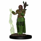 D&D Icons of the Realms Premium Figures: Human Female Druid (6 Units) WZK93009