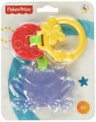 Fisher-Price - Friendly Frog Teether CBK76