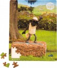 LEGLER Shaun the Sheep dancing lesson puzzle 10222